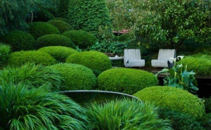 Amazing Garden Ideas Decorazilla Design Blog
