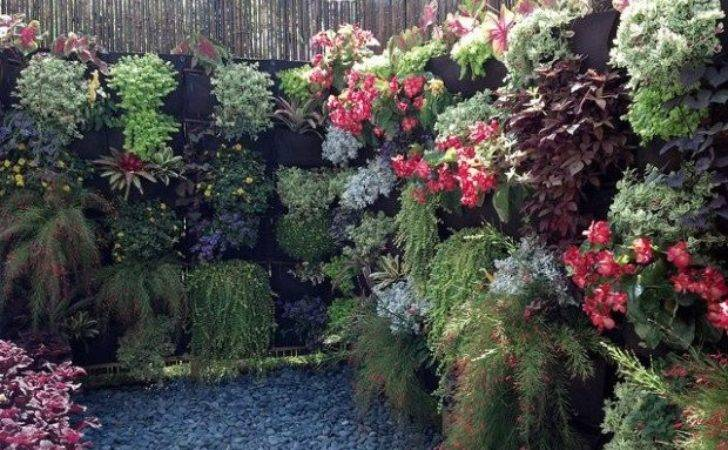Amazing Vertical Garden Ideas Your Small Yard