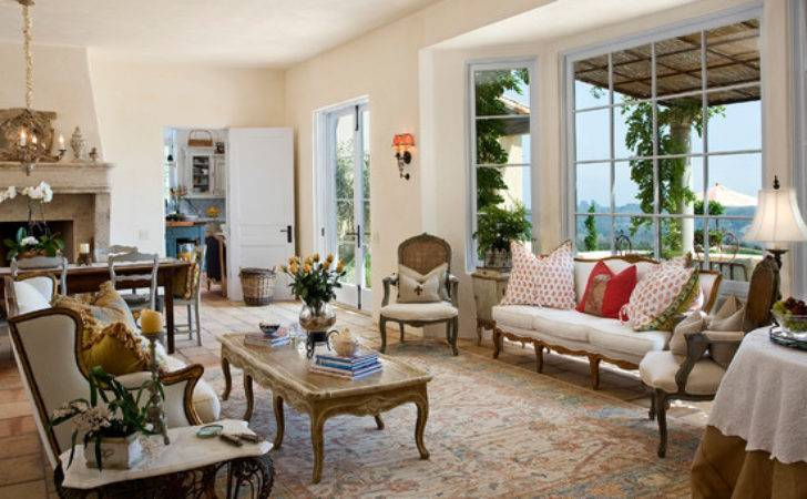 Attactive French Living Room Beautiful Homes Design