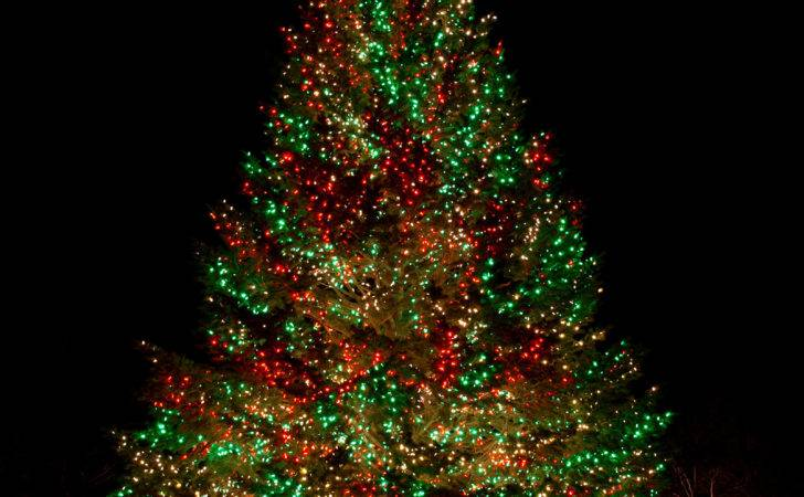Awesome Dazzling Christmas Tree Lights Ideas