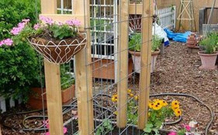 Awesome Diy Garden Trellis Projects Hative