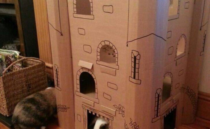 Best Bunny Castle Diy Ideas Pinterest Guinea Pig