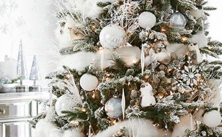 Best Christmas Trees Ideas Pinterest