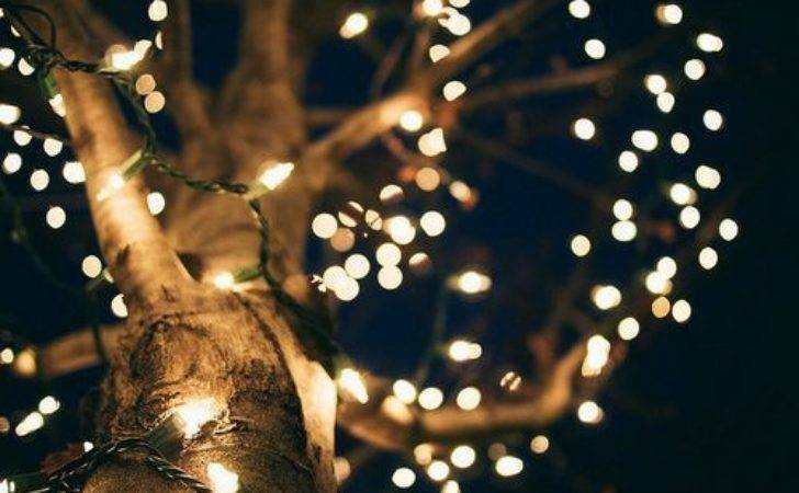 Best Fairy Lights Pinterest