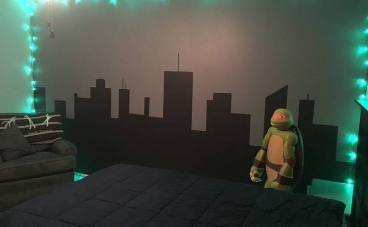 Best Ninja Turtle Bedroom Ideas Pinterest Boys