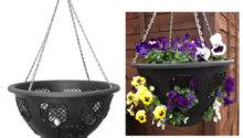 Black Easy Fill Plants Flowers Hanging Garden Outdoor