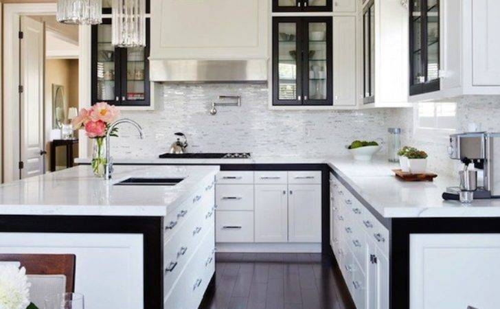 Black White Kitchen Design Contemporary