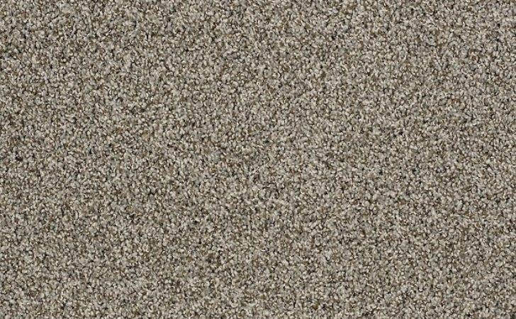 Carpeting Shaw Floors Style French Meadows Accent