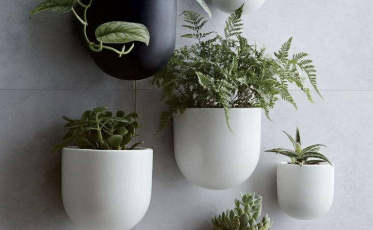 Ceramic Wall Planters Mad House