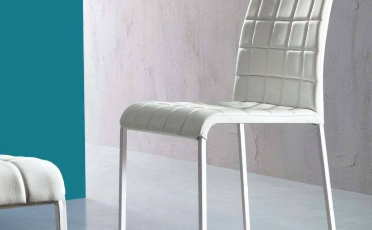 Chair Dining Kitchen Modern Pads Cushions