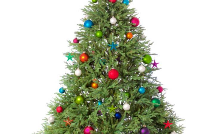 Christmas Tree Fire Safety Americlean Inc