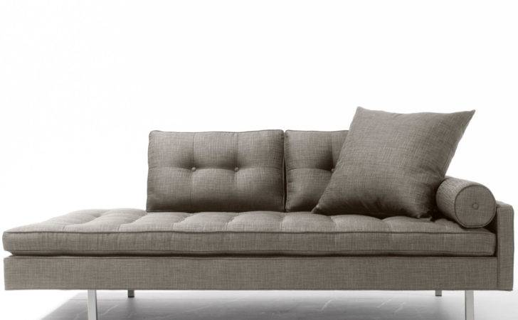 Contemporary Sofa Bed Best Way Enjoy Your Stay