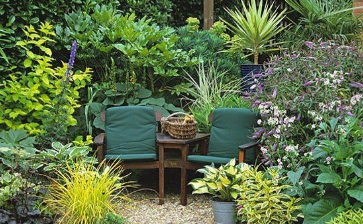 Cosy Seating Area Two Surrounded Large Leaved