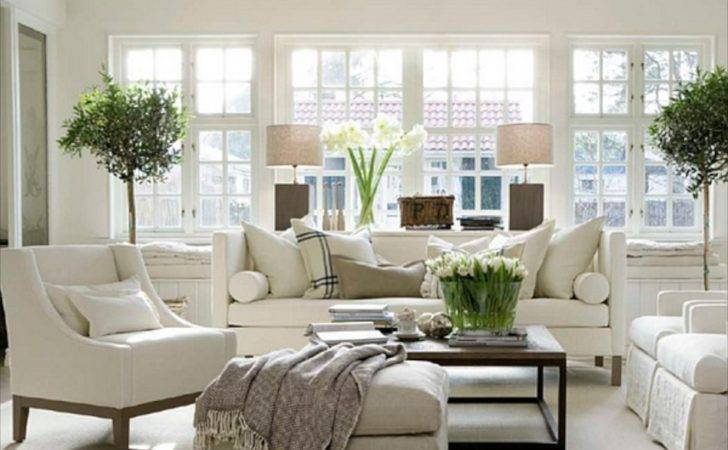 Cozy Traditional Living Room Indoor Plant Modern White