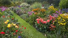 Create Herbaceous Border Budget