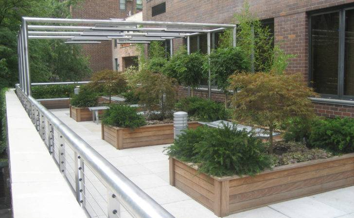 Creative Urban Roof Gardens Designs