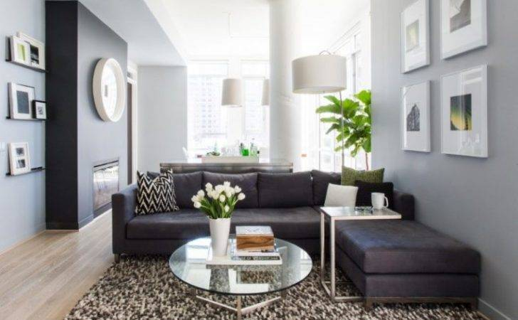 Dark Gray Couch Ideas Appealing Living Room Decohoms