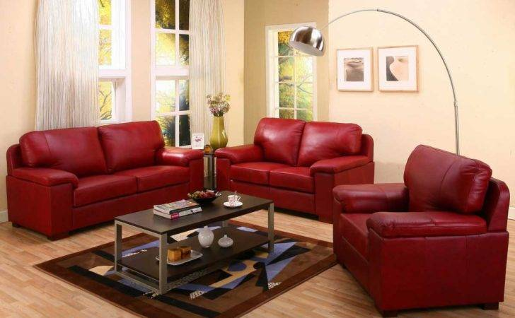 Decorate Living Room Red Sofa Brown Carpet