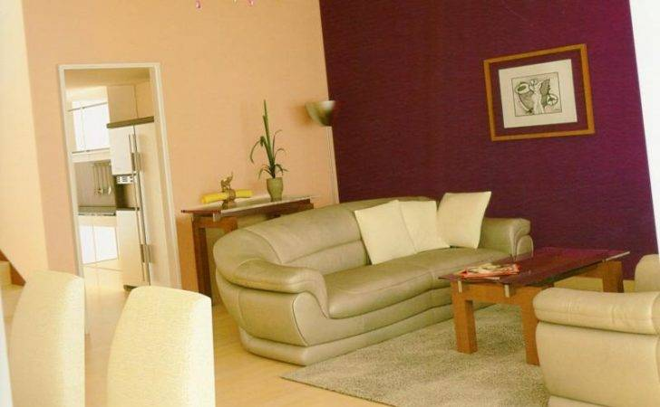 Delighful Asian Paints Living Room Colour Combinations