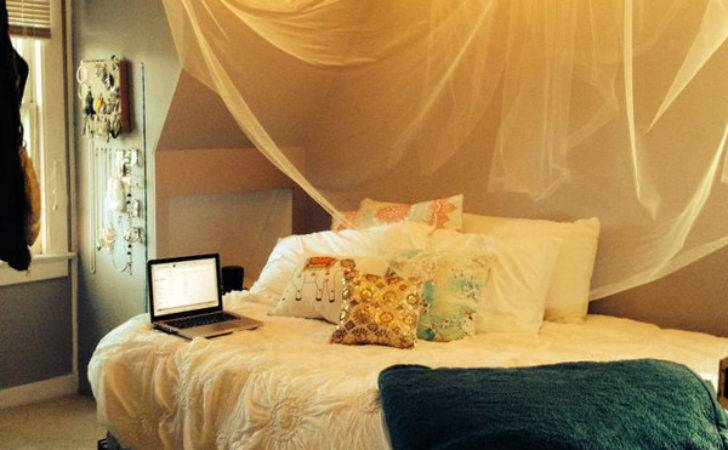 Diy Dorm Canopy Beds Home Design Interior