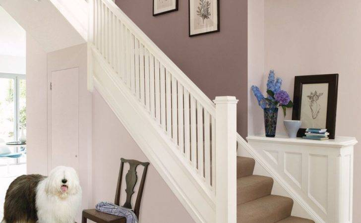 Dulux Nutmeg White Other Kitchen Walls Dining Room