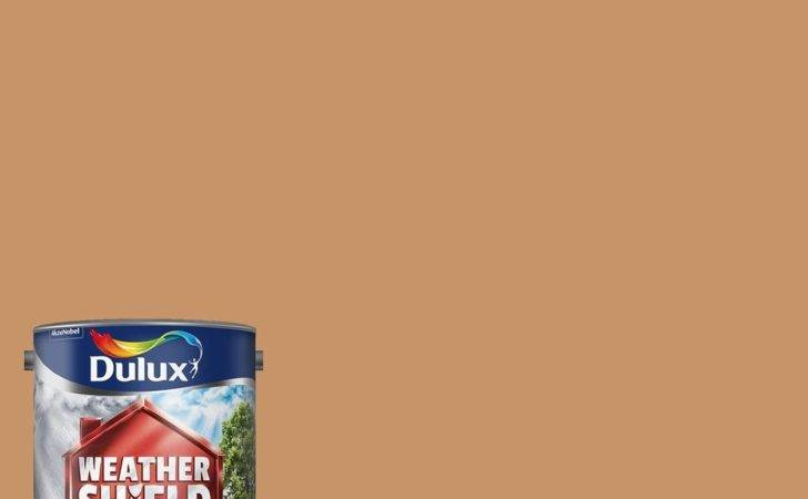 Dulux Weather Shield Exterior Walls Masonry Paint Smooth