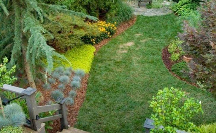 Easy Landscaping Ideas Futur