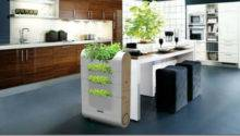 Eco Organic Kitchen Designs Decoholic
