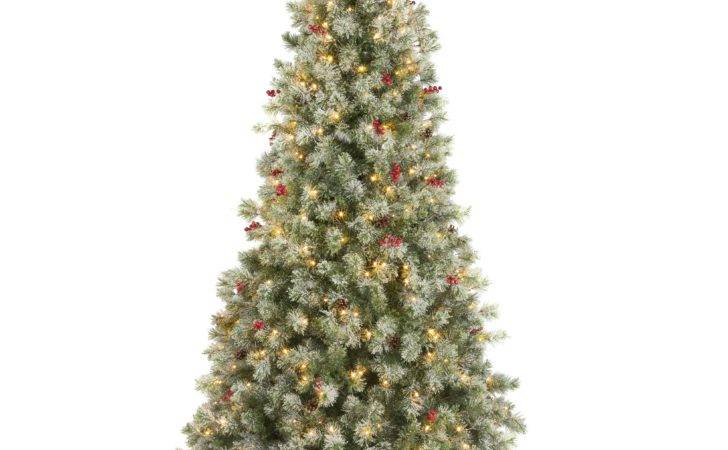 Fairview Pre Lit Led Christmas Tree Departments
