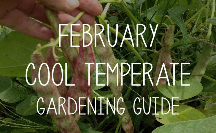 February Cool Temperate Gardening Guide Pip Magazine