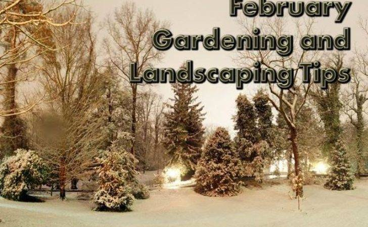 February Gardening Landscaping Tips Landscape Edging