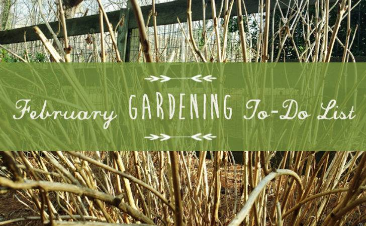 February Gardening List Redeem Your Ground