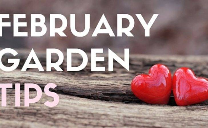 February Gardening Tips Mid Atlantic Archives Frame