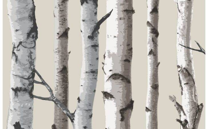 Fine Decor Birch Tree Natural Beige Cream