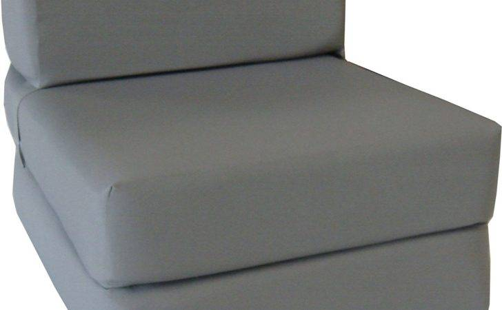 Fold Out Futon Chair Furnititure