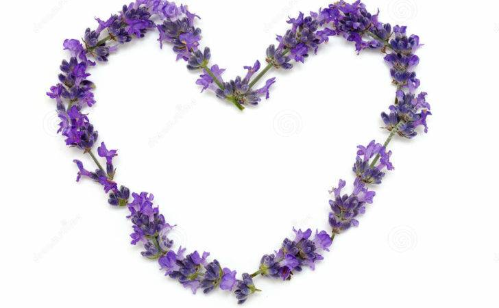 Fresh Lavender Heart Fragrance