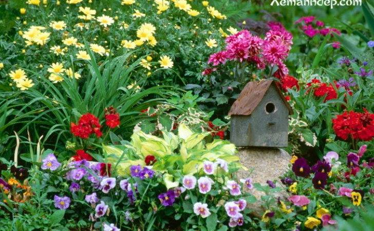 Funny Beautiful Flower Garden