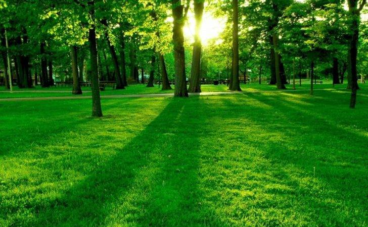 Green Nature Eco Friendly