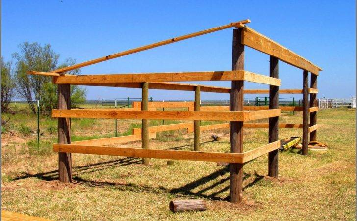 Horse Lean Shed Plans Sheds Home Decorating Ideas