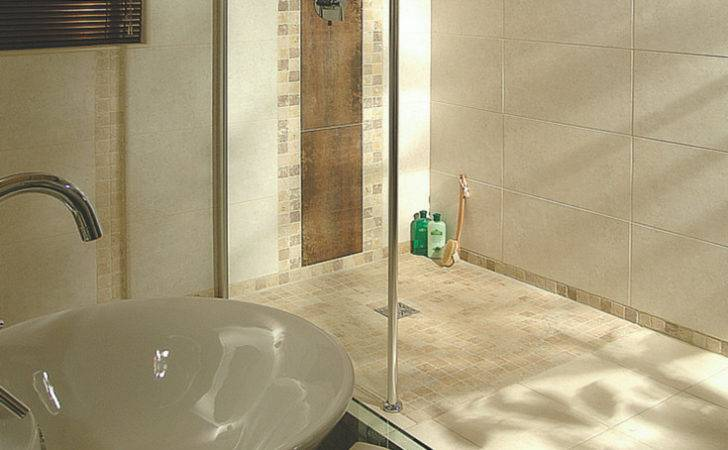 Ideas Improve Universal Accessible Hotel Shower