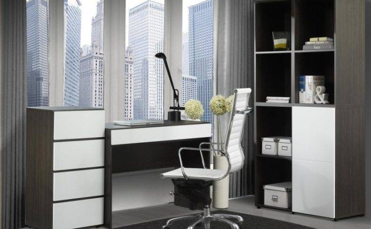 Ideas Modern Home Office Decorating