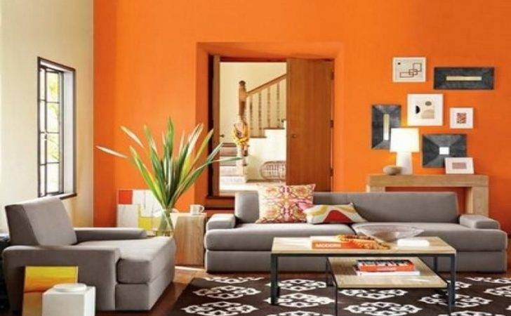 Indian Living Room Colour Combination Home