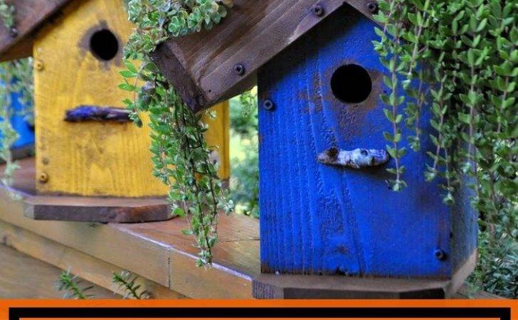 Inspiring Birdhouse Ideas Your Garden Homedecorxp