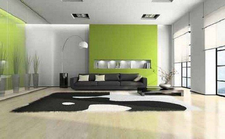 Interior House Painting Ideas Green White
