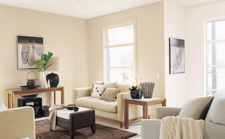 Light Brown Living Room Space Inspirations Paint