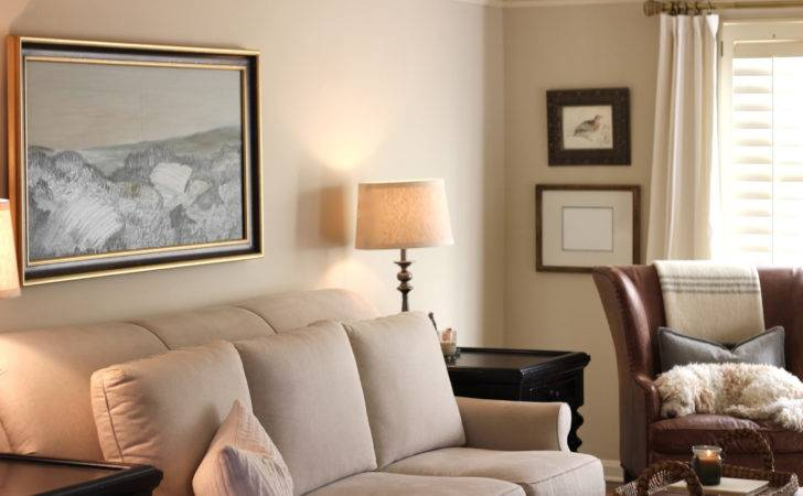 Light Paint Colors Living Room Home Combo
