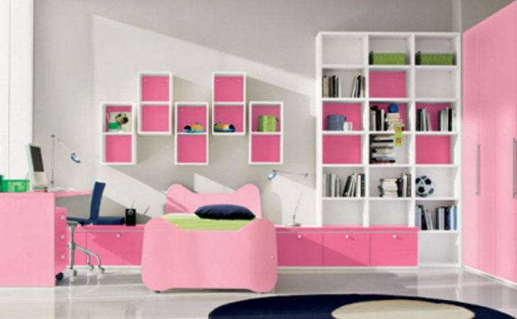 Living Rooms Designs Black White Pink Decosee