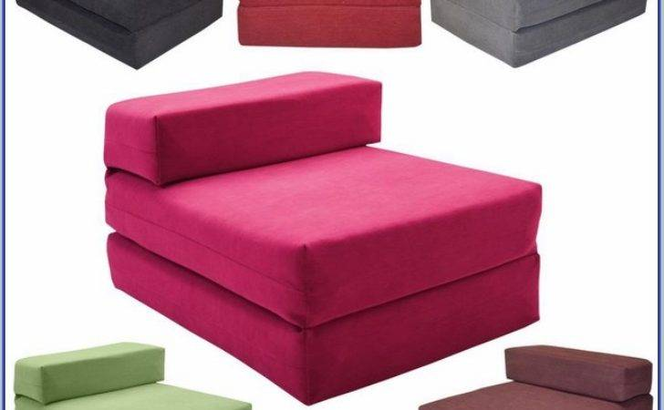 Loveseat Fold Out Bed Ikea Home Design Ideas