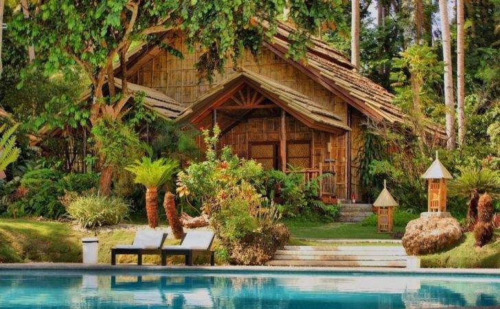 Most Beautiful Forest Houses Amazing Nature
