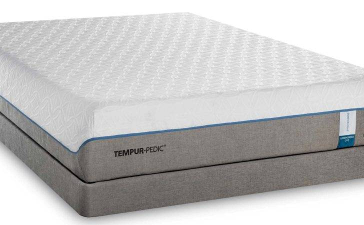 Most Comfortable Mattress Brands Life Time Guarantee
